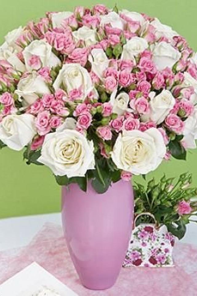 Камелия доставка цветов цветы купить красная пресня