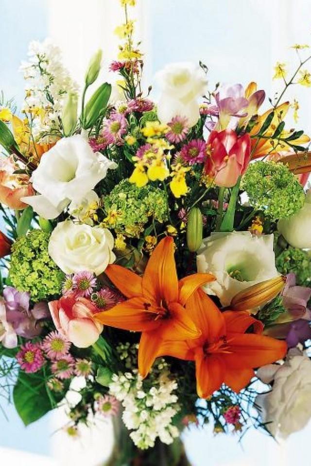 Камелия доставка цветов украина где купить цветы ростов-на-дону