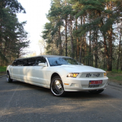 World Limo